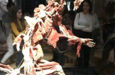 """Więcej o: Zwiedzanie wystawy """"Body World & The Cycle of Life"""""""