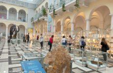 Więcej o: Wycieczka do Muzeum Geologicznego